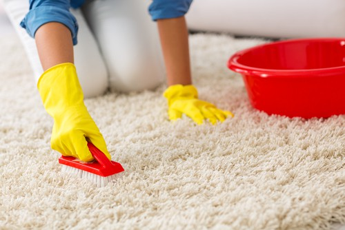 How Can I Disinfect My Carpet?